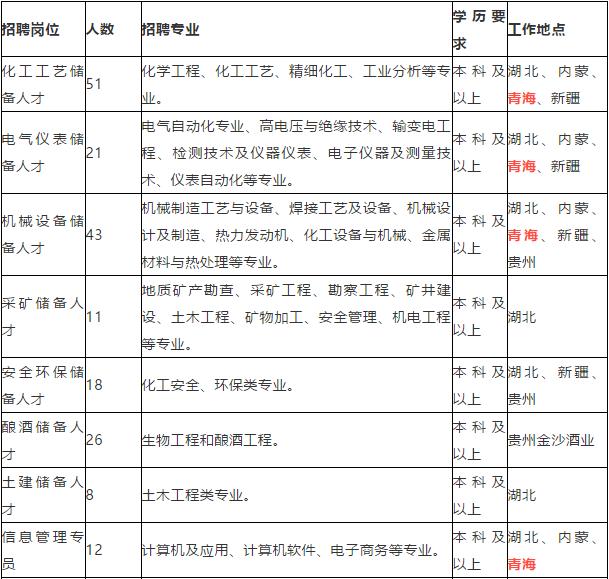 2021宜化集團有限責任公司(青海)招聘216人公告  第1張